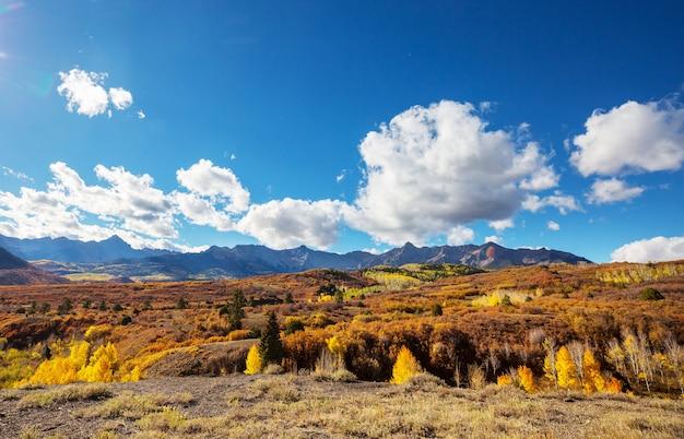 Automne jaune coloré dans le colorado, états-unis. automne.