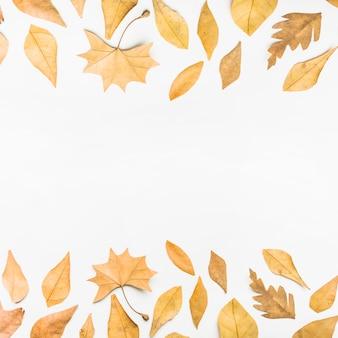 L'automne laisse les côtés du cadre