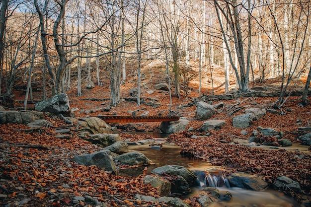 Automne longue exposition d'une rivière passant sous un pont entre les rochers et les feuilles colorées dans le sol