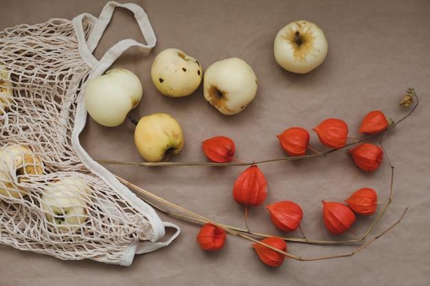 Automne nature morte aux pommes et fleurs oranges de physalis