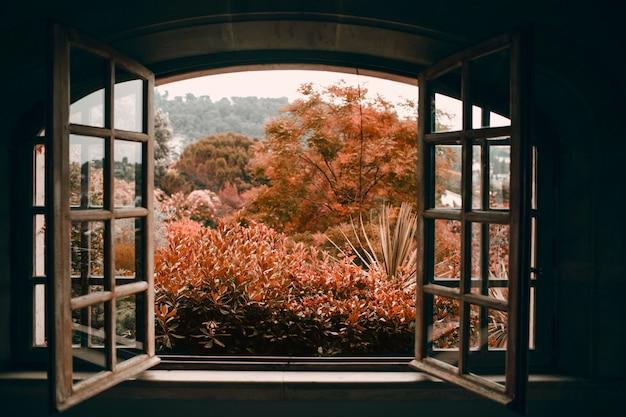 L'automne à travers une fenêtre vintage ouverte