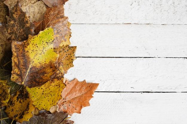 Autum avec des feuilles sur du bois blanc, espace de copie, vue de dessus
