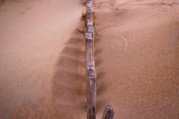 Aventure dans la dune