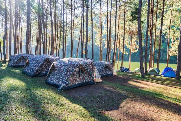 Aventures campant et campant le matin avec un léger brouillard à pang-ung, mae hong son, thaïlande