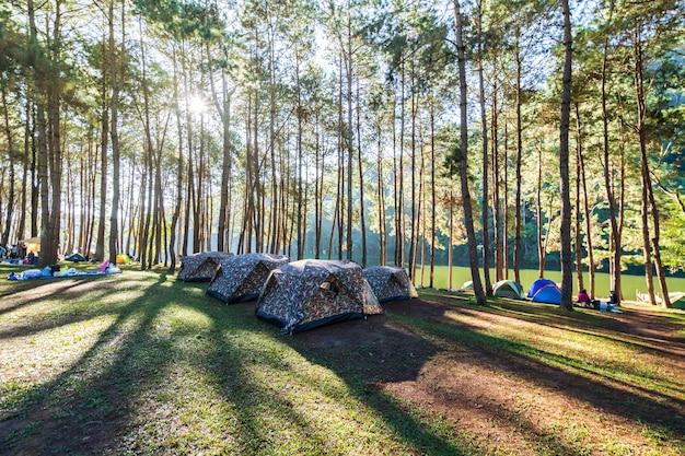 Aventures campant et campant le matin avec lumière