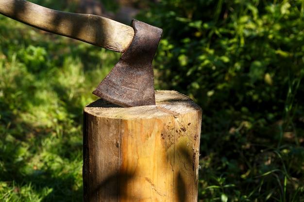 Ax coincé dans la souche. hache dans une souche en bois dans la forêt.