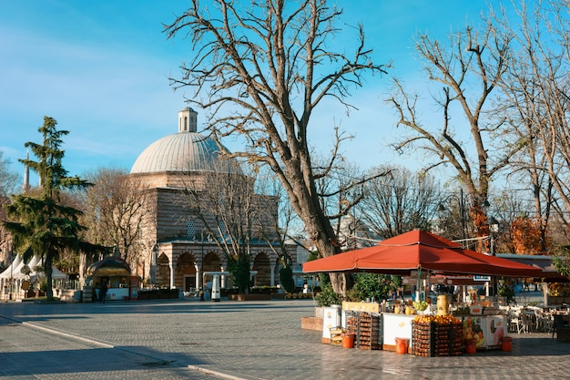 Ayasofya hurrem sultan hammam, istanbul. décrochage de fruits sur le hammam hurrem sultan en automne