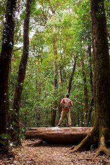 Backpacker debout sur un tronc d'arbre en forêt