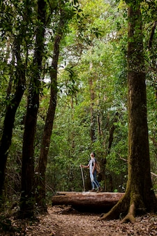 Backpacker en forêt avec des arbres élevés