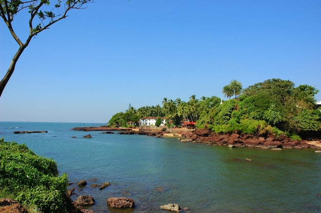 Backwater island