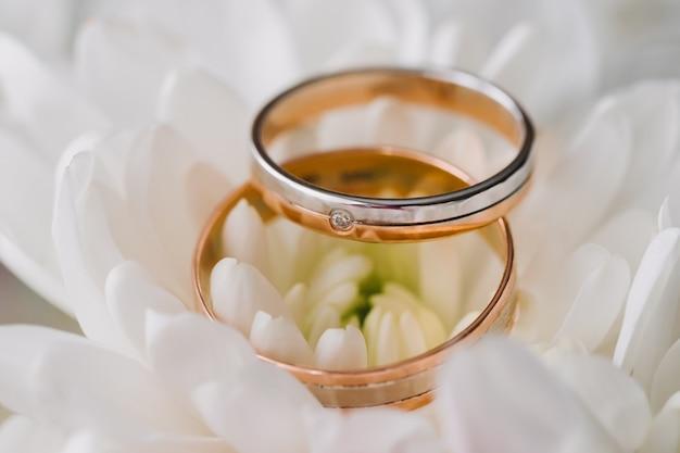Bagues en or pour mariage sur lumière tamisée