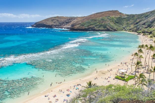 Baie d'hanauma, paradis de la plongée en apnée à hawaï