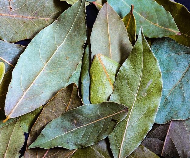 Baie séchée avec fond texturé. feuilles de laurier séchées aromatiques texture background. épice pour cuisiner.