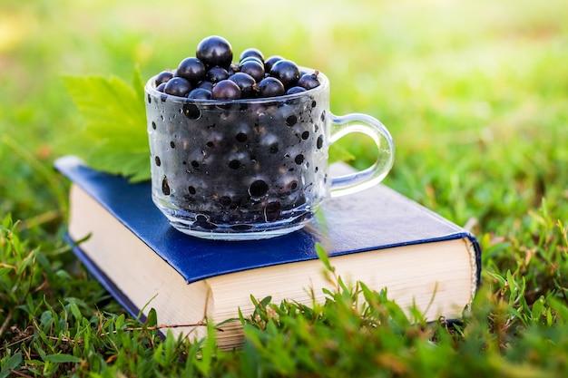 Baies de cassis sur un livre dans le jardin sur l'herbe par temps ensoleillé