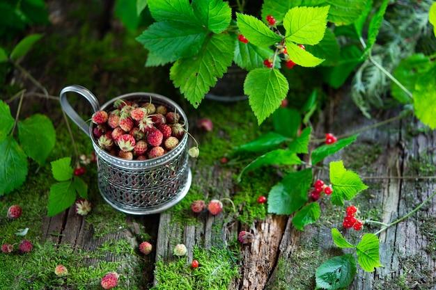 Baies de la forêt. baies d'os et de fraises sur le vieux fond en bois avec de la mousse
