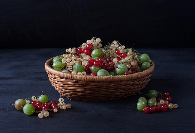 Baies de groseilles rouges et blanches et groseilles à maquereau dans un panier sur un fond noir