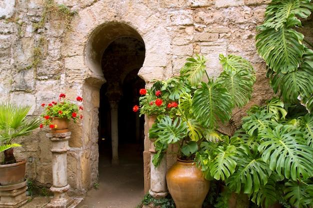 Bains arabes dans la vieille ville de majorque de barrio calatrava los patios