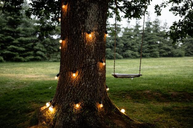 Balançoire en corde accrochée à un grand arbre avec des lumières rougeoyantes