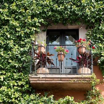 Balcon avec des planteurs de fleurs, zona centro, san miguel de allende, guanajuato, mexique