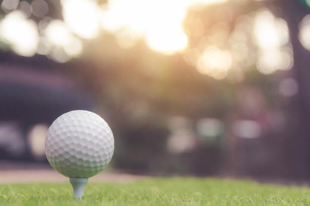 Balle de golf sur l'herbe verte prête à jouer au terrain de golf. avec fond