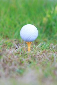 Balle de golf sur rugueux