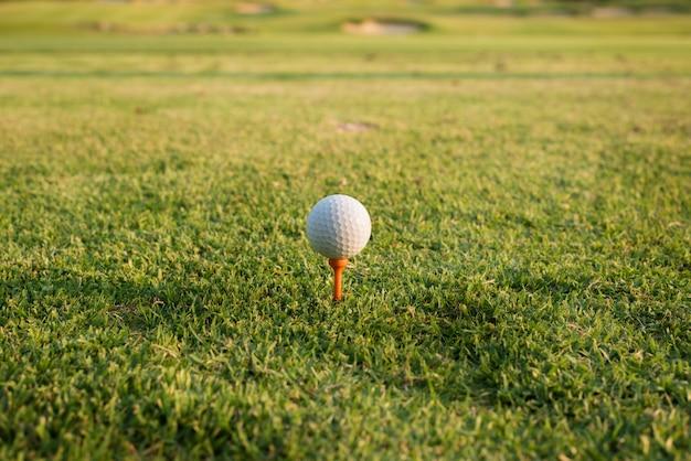 Balle de golf sur un tee contre le terrain de golf. gros plan, balle golf, tee