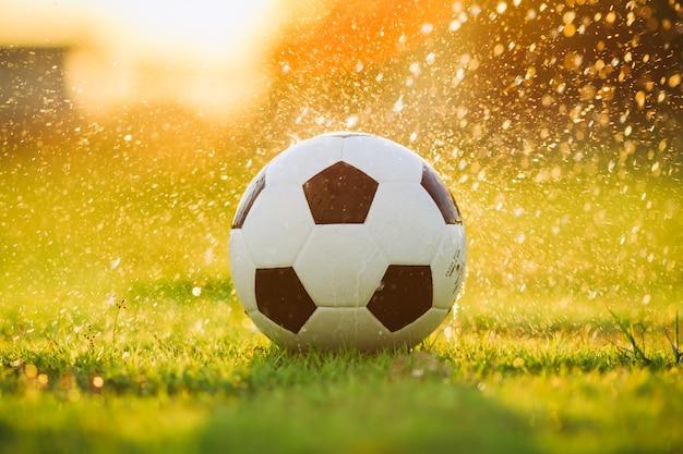 Balle sur le terrain en herbe verte pour match de football sous le soleil couchant et la pluie.