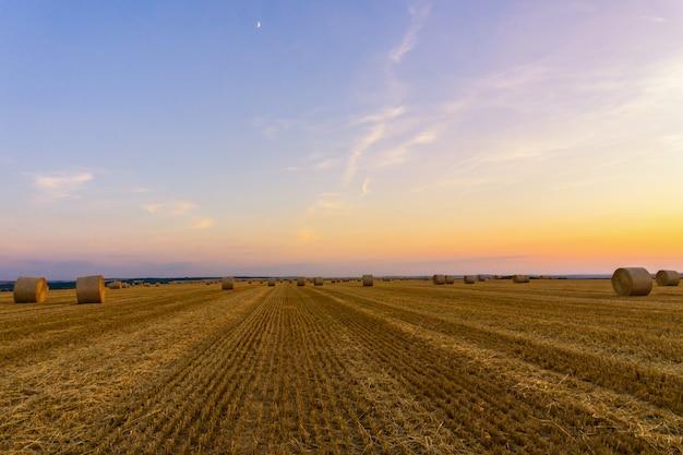 Balles de paille empilées dans un champ au coucher du soleil