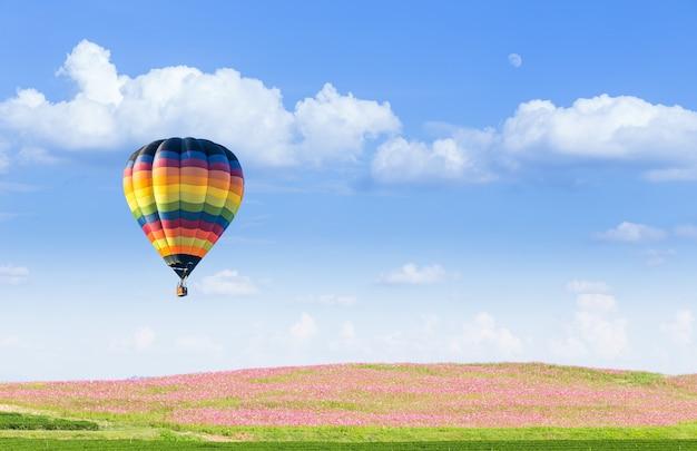 Ballon à air chaud sur les champs de cosmos rose avec ciel bleu