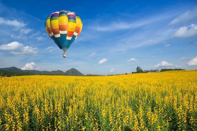Ballon à air chaud sur les champs de fleurs jaunes contre le ciel bleu