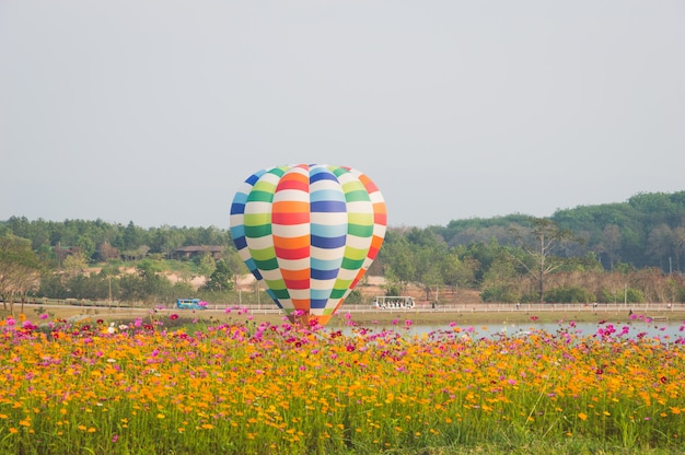 Ballon flottant au milieu du champ de fleurs cosmos