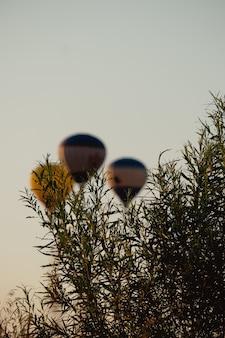 Ballons à air chaud colorés volant. fête des montgolfières. ballon sur fond de ciel et de coucher de soleil, silence de la nature. beau temps en été