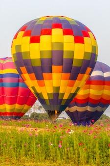 Ballons à air chaud flottant sur le champ de fleurs de cosmos