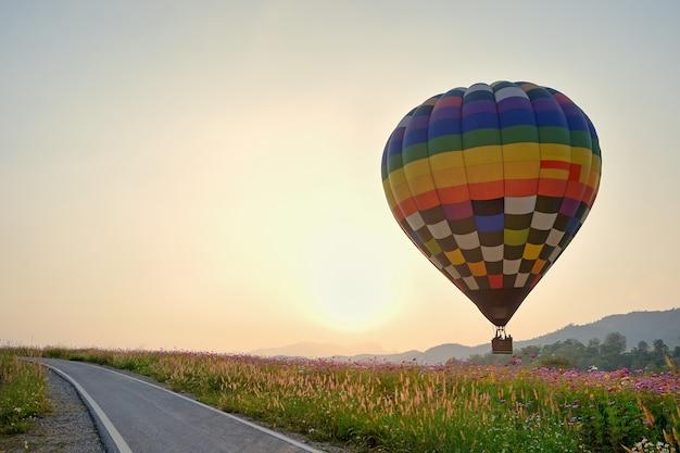 Balloon et paysage de fleurs