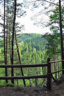 Une balustrade de rondins au-dessus d'une falaise recouverte d'arbres derrière eux se trouve une vallée entre les montagnes