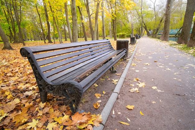 Banc en bois vide dans le parc d'automne. saison d'automne dans le parc de la ville. photographie grand angle.