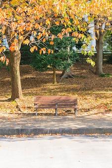 Banc dans le parc d'automne