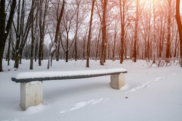 Banc dans le parc d'hiver avec la lumière du soleil. gros plan, mise au point sélective