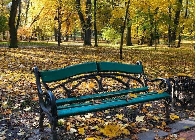 Banc dans le parc de la ville d'automne avec des feuilles jaunes sous les arbres.