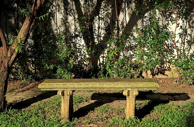 Banc de pierre sous l'arbre au soleil, jardin tropical