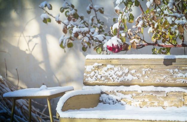 Banc avec un saupoudrage de neige dans le jardin d'hiver