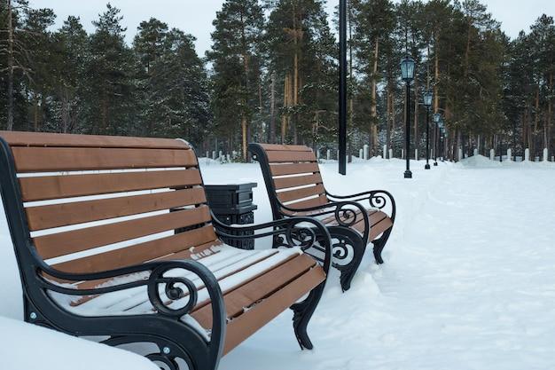 Bancs en bois dans un parc avec de grands pins en hiver.