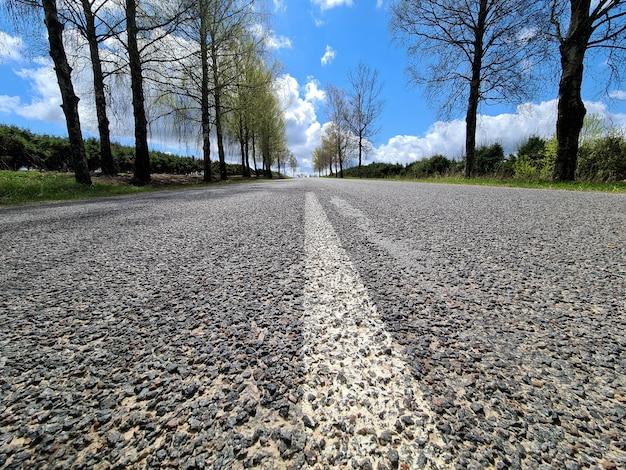 Bande De Séparation Blanche Peinte Sur Route Asphaltée Sur Fond D'arbres Et De Ciel Bleu Photo Premium