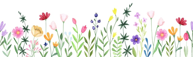 Bande transparente florale aquarelle. fleurs sauvages abstraites dessinées à la main
