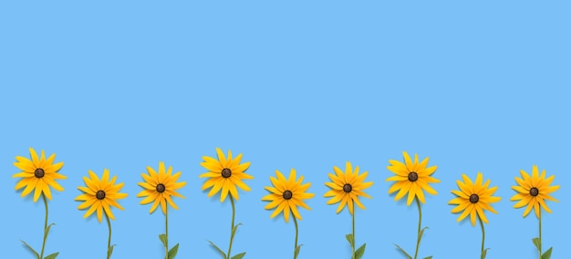 Une bannière faite de fleurs orange vif sur fond bleu. une carte postale d'été.