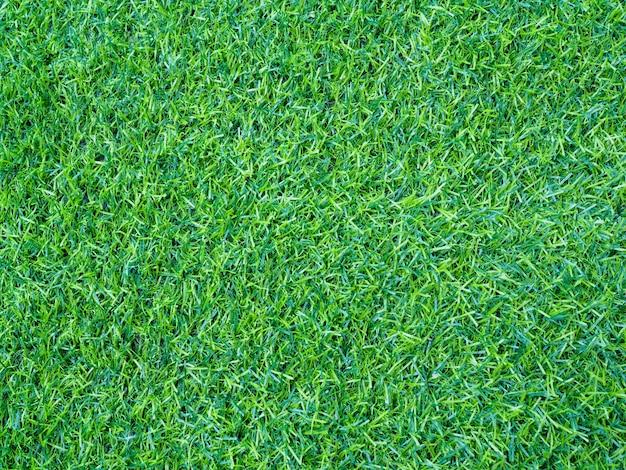 Bannière avec fond d'herbe pelouse verte