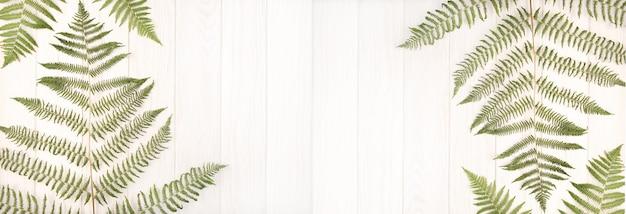 Bannière de fougère verte laisse sur une table en bois blanc