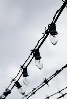 Barbwire et les lumières électriques