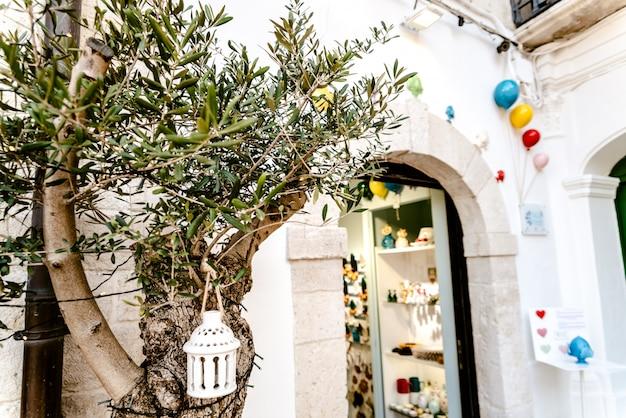Bari, italie - 8 mars 2019: un olivier à la porte d'un artisanat italien avec des ballons colorés suspendus