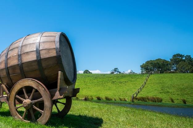 Baril de vin dans le champ d'herbe verte